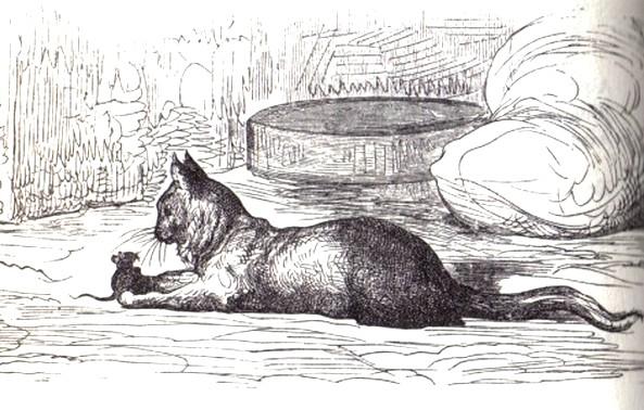 Ch'Viux Cat et l'Jonne Souris